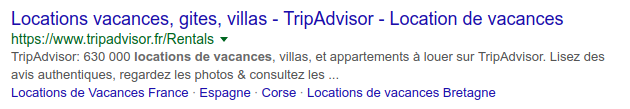 Exemple de description affichée sur Google